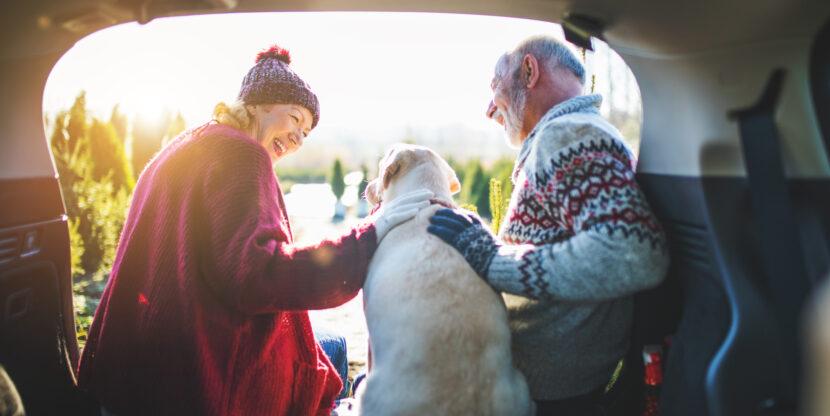 Mis toimub pensioniga